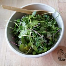 Basmatireis, Edamame, Pak-Choi, Pilze, Mikrogreens, fruchtig grüne Soße